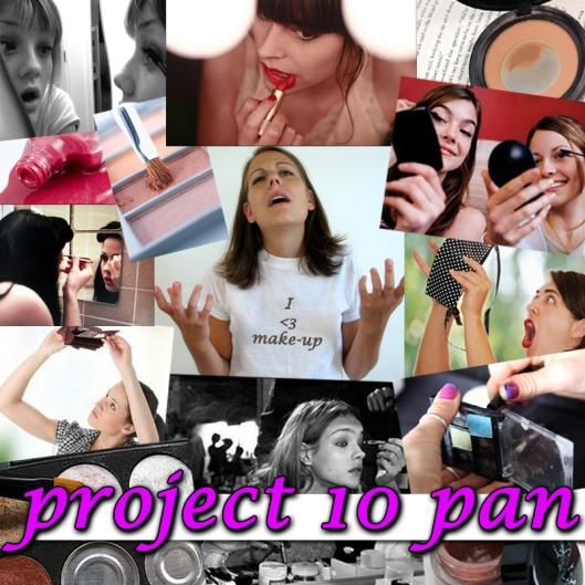 project 10 pan blog